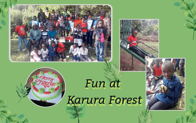 Header image showing selected photos of the day at Karura Forest
